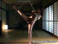 sexy oriental doxy in ropes hanging on the